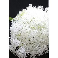 Koper biały