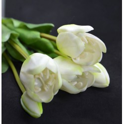 Bukiet tulipanów - 5 sztuk